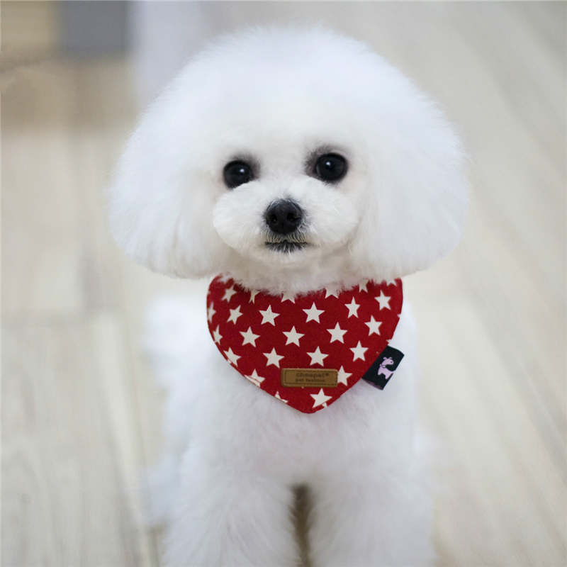 Pet Products Cat Dog Supplies Aksesuāri Zvaigznes Drukāt - Mājdzīvnieku produkti - Foto 4