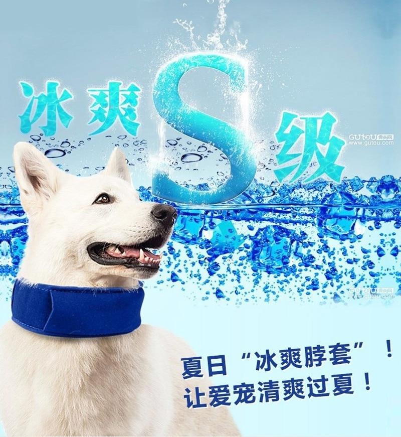 Sommar husdjur hund kyla halsband Nylon gel stor storlek krage sele - Produkter för djur - Foto 2
