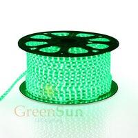 Xanh DẪN Dải Ánh Sáng 20-100 M 60 LEDs/meter Siêu Sáng 5050 SMD LED Ngoài Trời Vườn Nhà Strip Rope Ánh Sáng Không Thấm Nước
