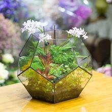 Extra Large Handmade Polyhedron Glass Geometric Terrarium Box Tabletop Succulents Fern Moss Plants Box Planter Flower Pot Bonsai