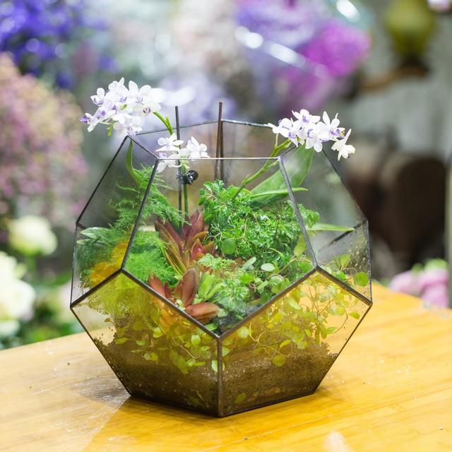 Extra Large Handmade Polyhedron Glass Geometric Terrarium Box