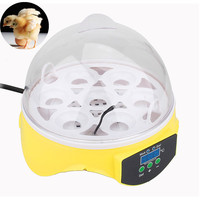 7-egg-incubator-for-eggs-broedmachine-mini-egg-chicken-duck-quail-hatcher-pigeon-birds-electronic-display-thermostat