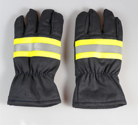 Free Shipping Hot Selling Fire Fighting Hot Insulated Working Gloves Safety Protecting Gloves Two Pairs Color