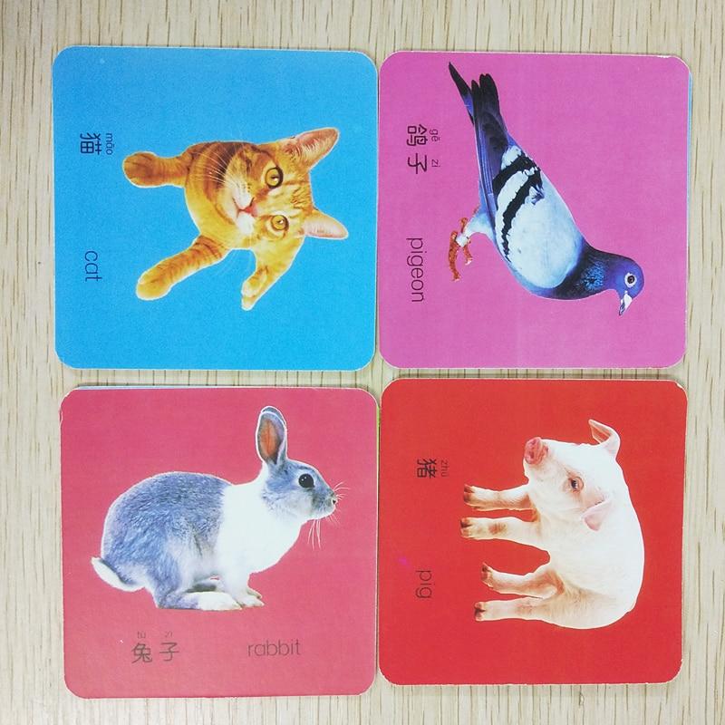 108 Kelime Ingilizce Ve çince Pinyin Hayvan Kartları Ile Resim Için