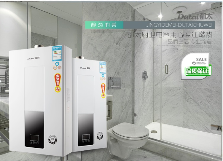 2018 New Technology intelligent 2nd LPG WATER HEATER For Thermostatic Tankless Instant Bath Boiler Shower Head CE APPROVED circulating fluidized bed boiler technology