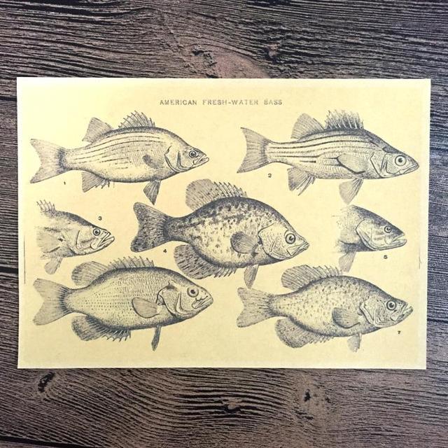 Aliexpress.com : Buy Free ship Old Fish Retro Prints Poster Bar/cafe ...