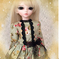 42 см BJD Куклы мяч соединенных куклы-волшебная страна minifee хлоя