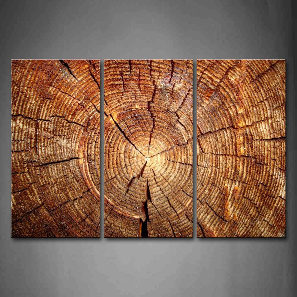 3 piece wall art painting wood annual ring portrait picture print on