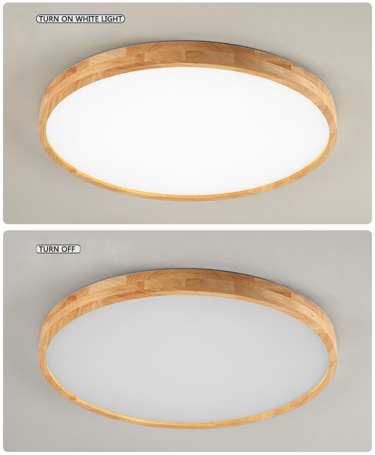 led ceilging light 7