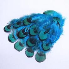 100 шт./лот DIY Изготовление ювелирных изделий/одежда синее перо фазана 3-8 см/1-3 дюйма