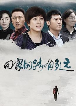 《回家的路有多远》2017年中国大陆剧情,家庭电视剧在线观看