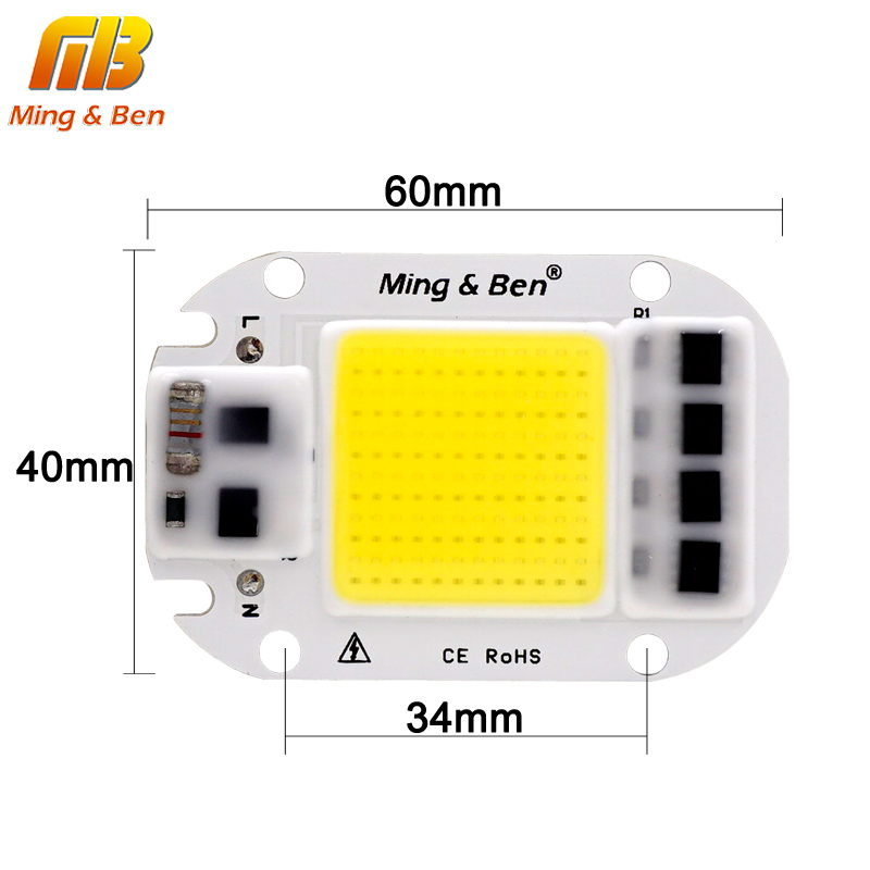 2 stücke LED COB Birne Chip 20W 30W 50W Smart IC 110V 230V LED Chip für DIY LED Flutlicht Tag Weiß Cold White Warm Weiß LED Perlen