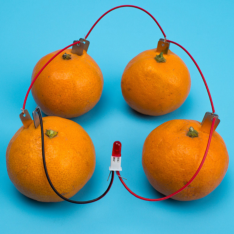Children DIY Homemade Fruit Battery Power Educational Electricity-generating Experiment Exercise Children's Thinking Ability