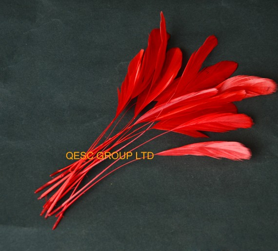Wholesale New Red colour.14-19cm cocktail feather for fascinator church hat sinamay hatparty maskwedding hat,14 colors.