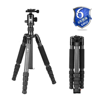 Sirui Pro Flexible Tripod Fluid Head Tripod Kit Light For SLR Cameras Video Travel Action Camera Accessories DHL T2205X+G20KX
