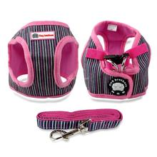 Charming Yorkie Harness with Leash Rope