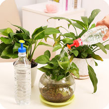 Bottle Top Watering Garden Plant Sprinkler Water Seed Tools Watering Sprinkler Portable Household Potted Plant Waterer(China)