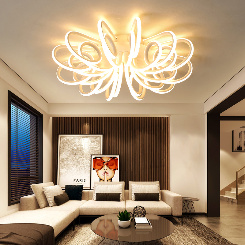 Surface mount ceiling light fixture for bedroom living room Acrylic ceiling lamp Decorat ...
