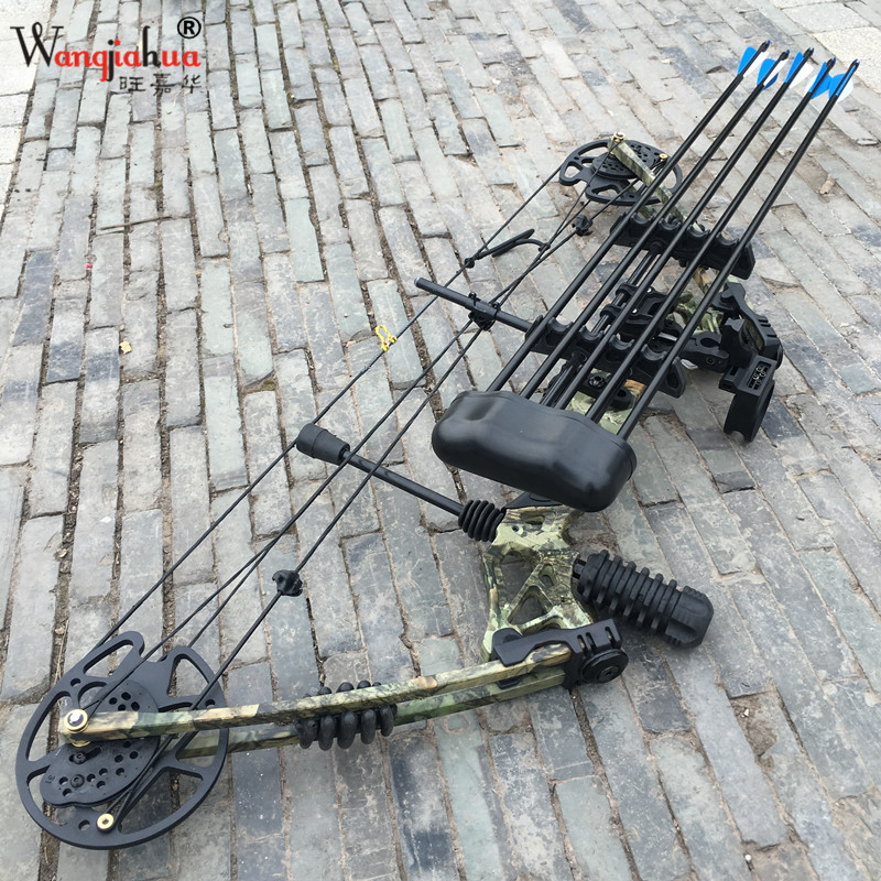 Outdoor Archery Equipment Hunting Compound Bow Sports Entertainment Competition Fitness Bow Composite Bow