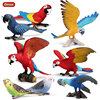 Oenux Forest Bird Animals Parrot Model Action Figures Home Decor Miniature Garden Figurine Colorful Educational Cute Toys