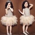 2015 New arrival Girls Dress Children Princess Party birthday gifts lace tutu dress veil Kids clothes Wedding Dress Free Ship