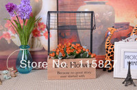 Free Shipping American Pastoral Wooden Storage Holder Magazine Holder CD Holder Wooden Storage Case Flower Box