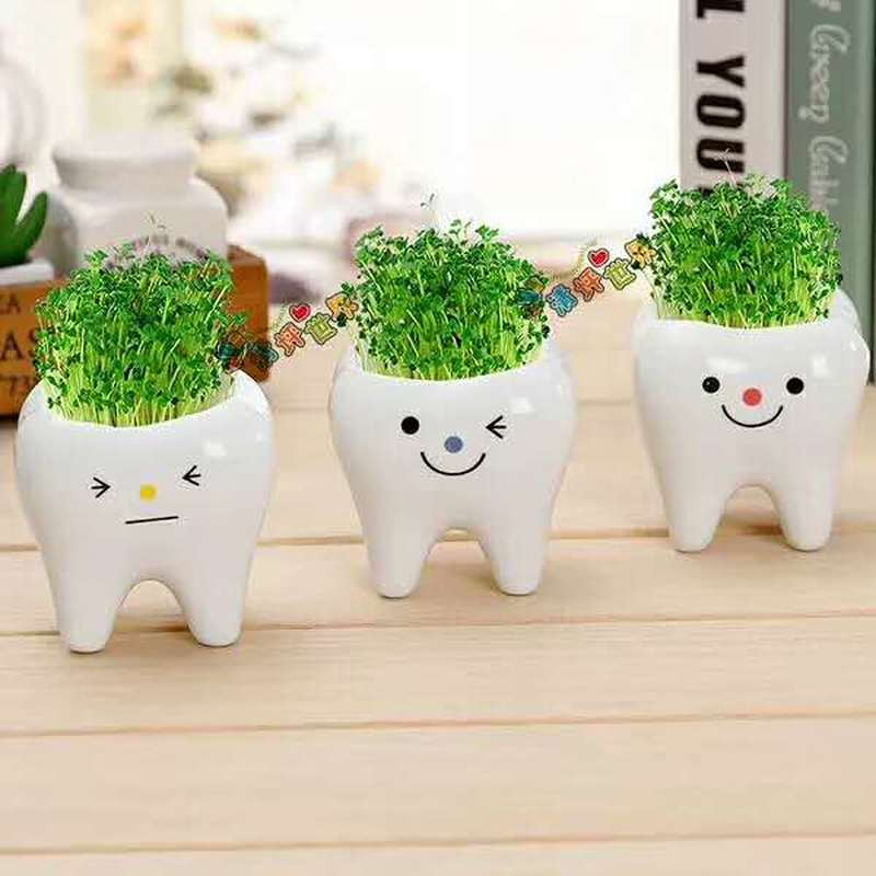 Home & Garden Cute Teeth Stars Expression Plant Flower Pot Negative Grass Doll Mini Diy Potted Plant For Home Office Christmas Model Toy