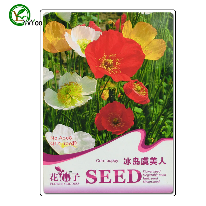 High quality seeds com poppy Seeds Promotion Balcony Bo
