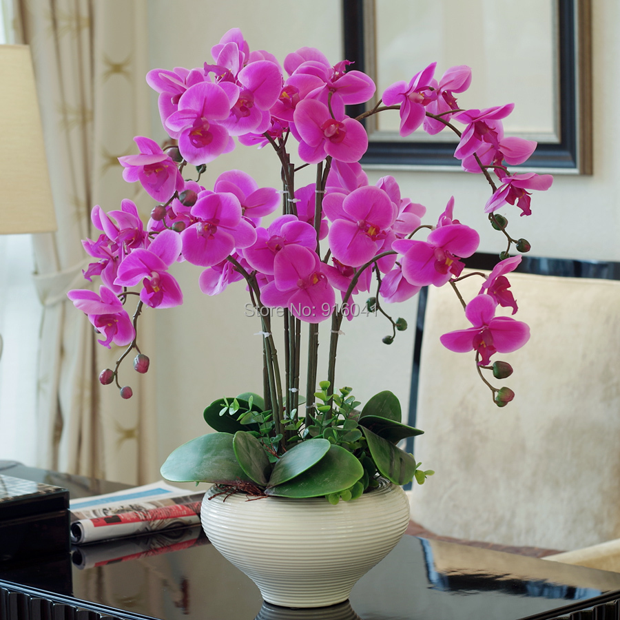 Real touch phalaenopsis set high simulation orchids flower for Decoration decoration