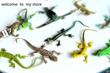 5PCS/SET Animal model toy Odor-free environment wildlife simulation Gecko lizard chameleon lizard model figure toy