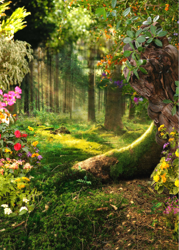 5x7ft Sunlight Fairy Tale Forest Flowers Cherry Branch