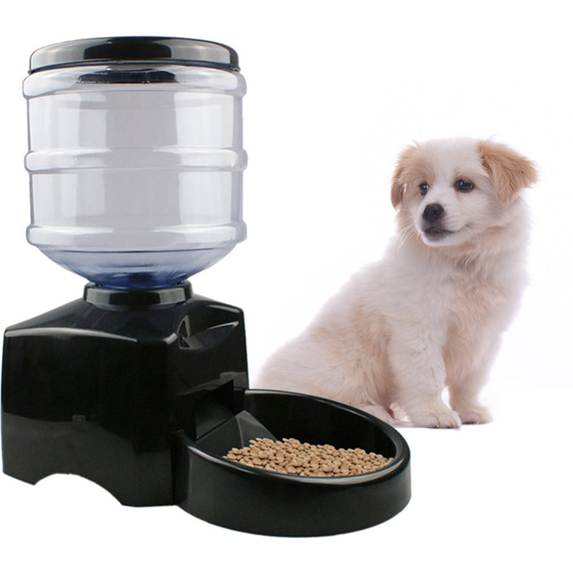 video arf ac feeder dp pets main com dog automatic animal chewy cat meal