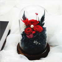 Preserved Real Rose with Fallen Petals in Glass Cloche Dome Wood Base Red Flower with Pearl 17CM Teachers Day Gift