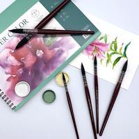 1 Pcs peinceau et brosse pour Aquarelle | Ensemble pour Aquarelle Gouache Dessin Art Peinture 10
