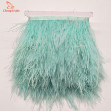 Ostrich Ribbon Feather-Trim Mint Decoration Fringe-Clothing Natural Green 10meters Chengbright
