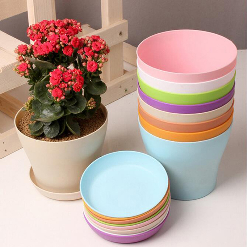 Buy saucer planter and get free shipping on AliExpress.com
