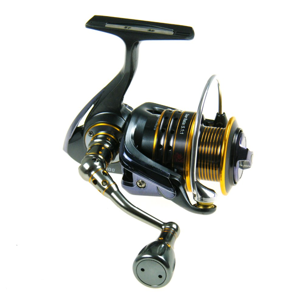 Saltwater spinning casting reels 11 1 sw1000 6000 clf for Casting fishing reels