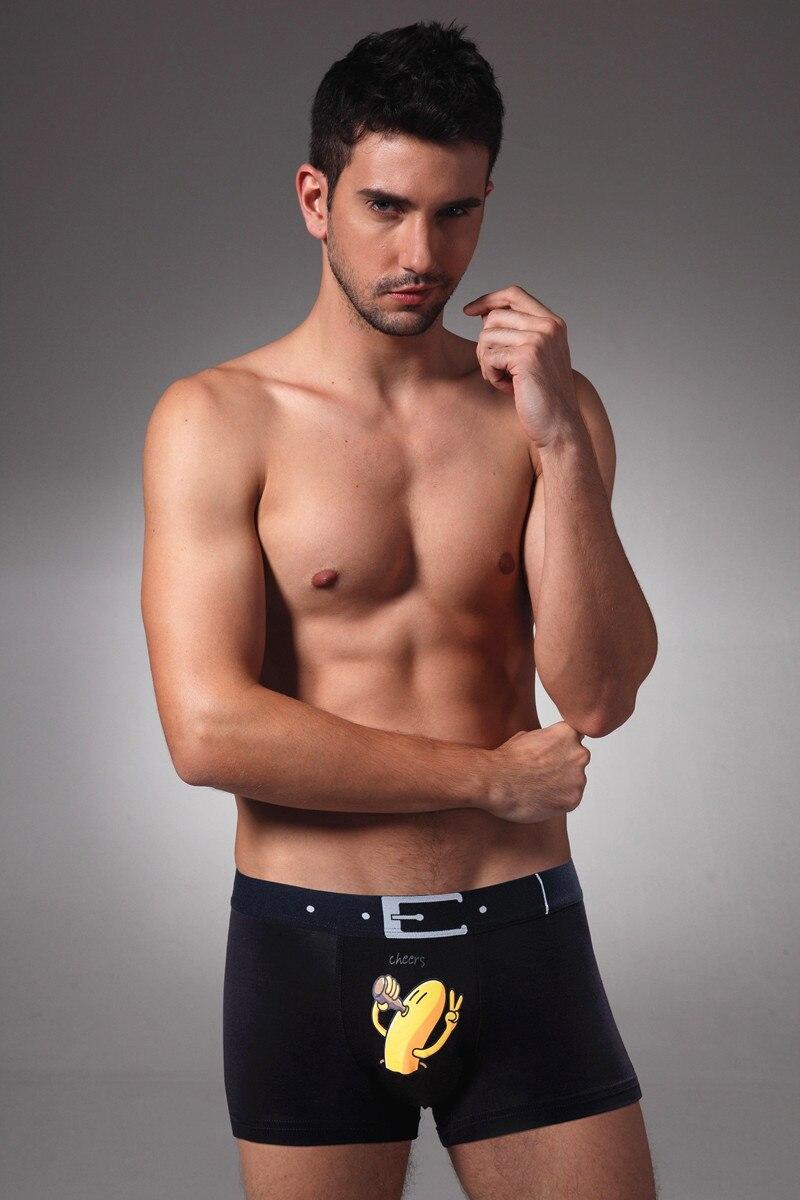 Gay bear penis