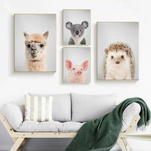 Coelho Porco Animal Hedgehog Alpaca Arte Pintura Da Lona Poster Home Decor 12x18 24x36 polegada(China)