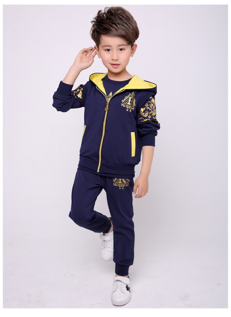 Fall 2017 Kids Sets Cotton Boys Clothing Children's Sports Suits Teenage Kids Clothes Casual Hooded 3-Piece Suit Kids Clothes