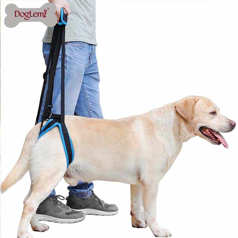 Adjustable Dog Lift Harness for Back Legs Pet Support Sling Help Weak Legs Stand Up Pet Dogs Leash Aid Assist Tool