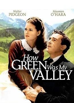 《青山翠谷》1941年美国剧情,家庭电影在线观看