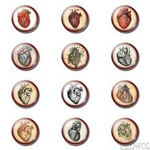 12 Uds Vintage Anatomía del corazón 25MM imán de nevera Steampunk Doctor regalo para estudiantes imanes para la nevera soporte de nota de cristal