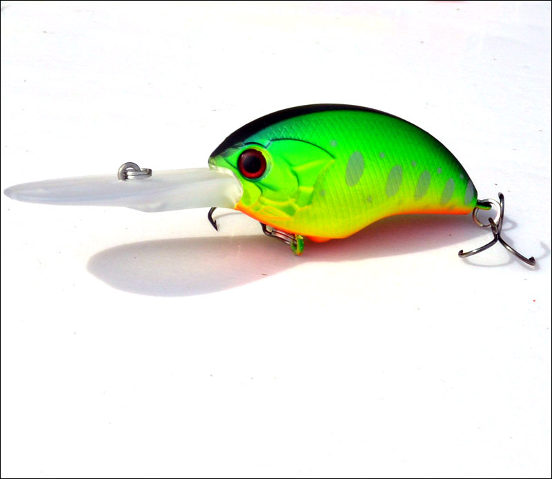 Le Flotteur-Nouveauté Fishing Lure