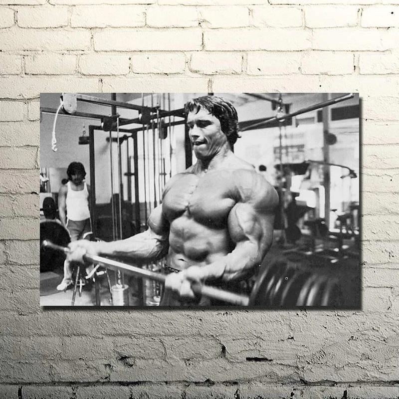ARNOLD SCHWARZENEGGER Bodybuilding Motivational Silk Poster 13x20 inch