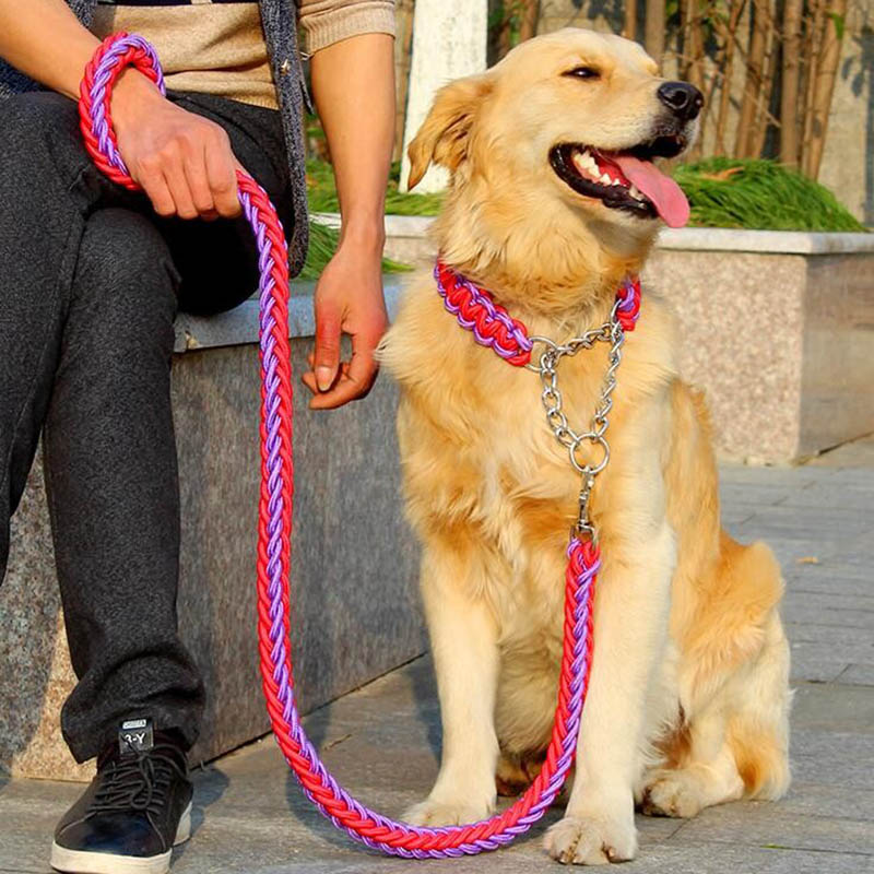 1 set Big Pet Dedicated Dog Leash And Collar Strands Plaited Rope Dogs Collars Leashes Chain Strong For Large Dogs Animals