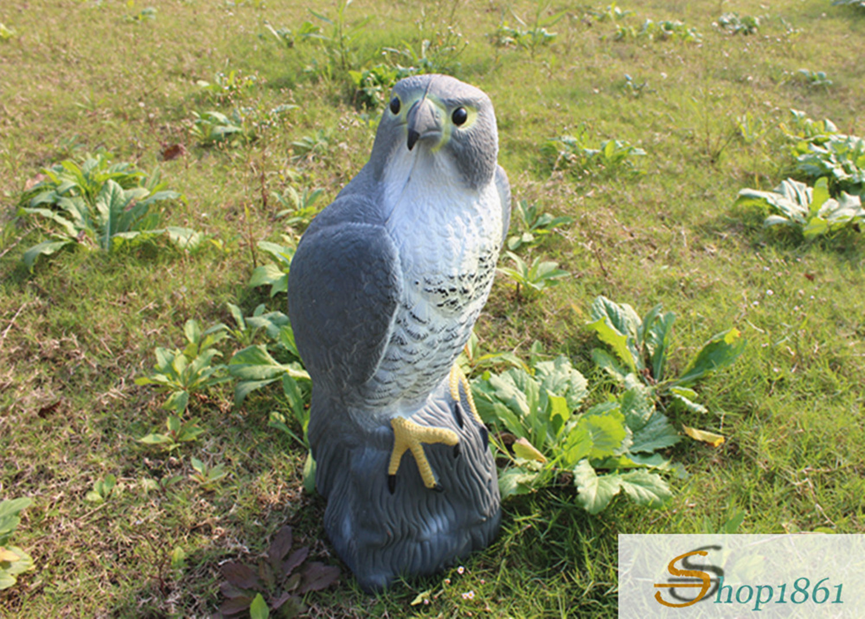 flying falcon bird deterrent - HD1500×1072