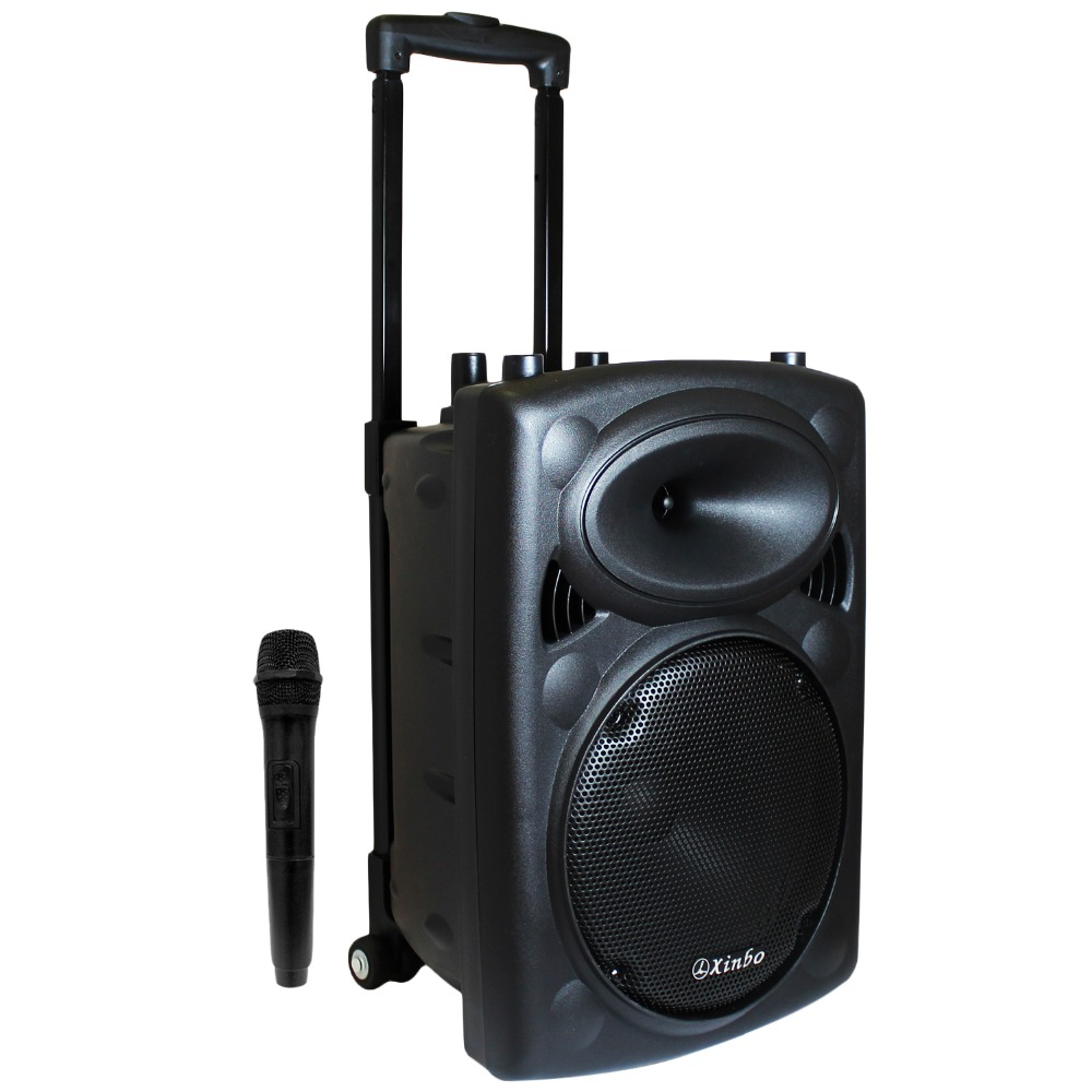 Bluetooth Speaker Portable Karaoke with Microphone MP3 Radio Trolley Wheel High Power for Parties Size Woofer 3.5