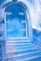 HUAYI Snowy Winter Door Stage landscape Photography Newborn Backdrop XT4150