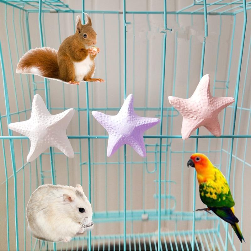 Фруктовый/звездный питомец молярная палка Шиншилла белка молары попугай Grindstone птица игрушка молярные игрушки из камня Попугай Cockatiel Budgie